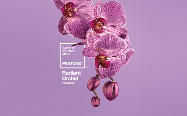 radiant Orchid 18-3224