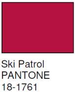 pantone ski patrol