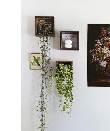 """se lo spazio è davvero poco possiamo fare dei """"quadri vegetali"""" via thedesignfiles.net"""