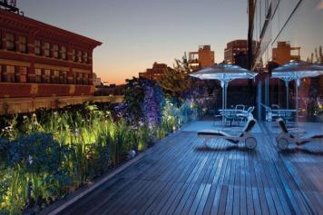 twilight-garden